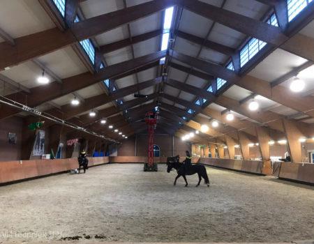 LED verlichting voor paardentraining